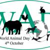 Feliz Dia Mundial do Animal!