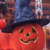 O Halloween já chegou à Jardiland!