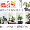 Workshop: Bonsais