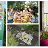Faça um piquenique no seu jardim