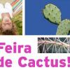 Os cactus