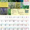 Calendário Jardiland: Julho 2014