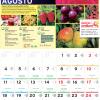 Calendário Jardiland: Agosto