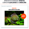 Promoções Aquarofilia!