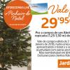Receba um vale de compras no valor do seu pinheiro de Natal 🎄🎄