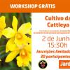 Workshop gratuito: Cultivo da orquídea Cattleya