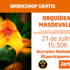 Workshop gratuito:  Orquídeas Masdevallia