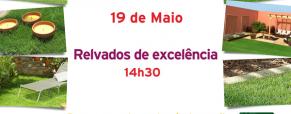 "Workshop ""Relvados de excelência"""