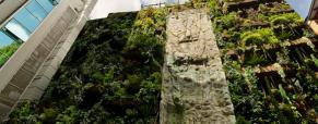 Jardim vertical espectacular com cascata em Madrid