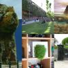 O melhor de 2012: Ideias Verdes