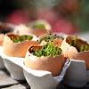 Vasos feitos com cascas de ovos