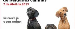 Concurso Beldades Caninas!