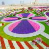45 Milhões de flores no Miracle Garden no Dubai