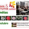 Workshop Camélias