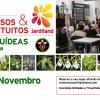 "Workshop ""Orquídeas Brassia"""