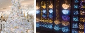 Como colocar as luzes de Natal