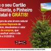 Na Jardiland, o seu pinheiro de Natal vai ficar grátis!!