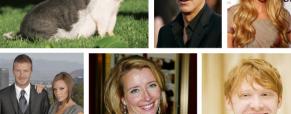 Os famosos e os seus animais exóticos