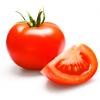 Como semear tomates