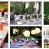 Festas de verão no seu jardim!