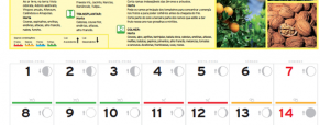 Calendário Jardiland: Setembro