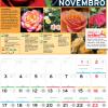 Calendário Jardiland: novembro