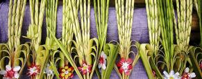 Qual é a origem das palmas no Domingo de Ramos?