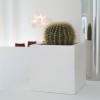 Decoração: ideias para fazer brilhar as suas floreiras e vasos