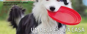 Novo Folheto Jardiland: Especial Animais