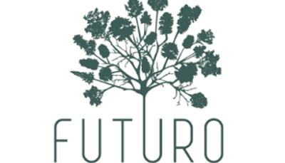 Ação de Voluntariado: Cuidar das árvores plantadas