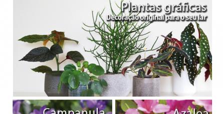As plantas do mês de março