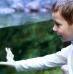 Como escolher um aquário para crianças?