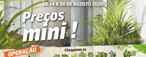 Folheto: Operação Urban Jungle