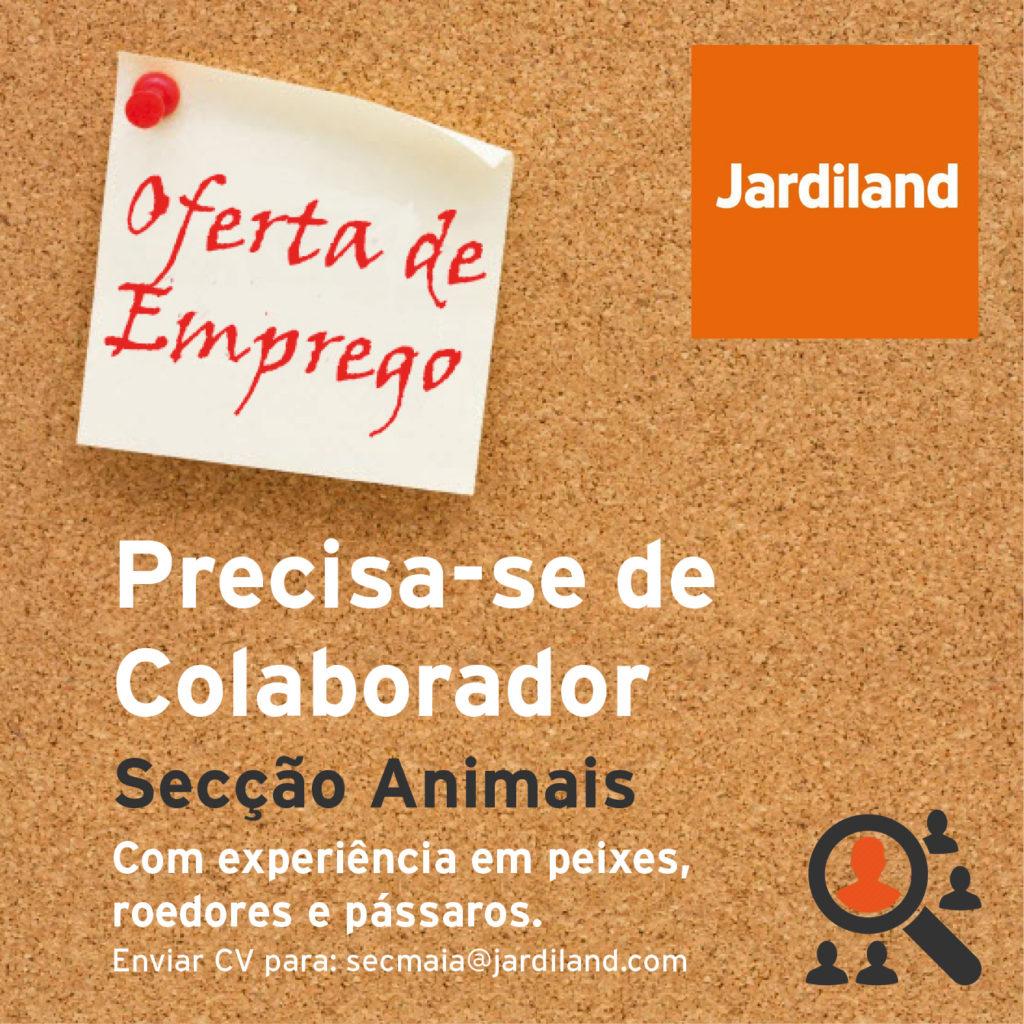 jardiland-job
