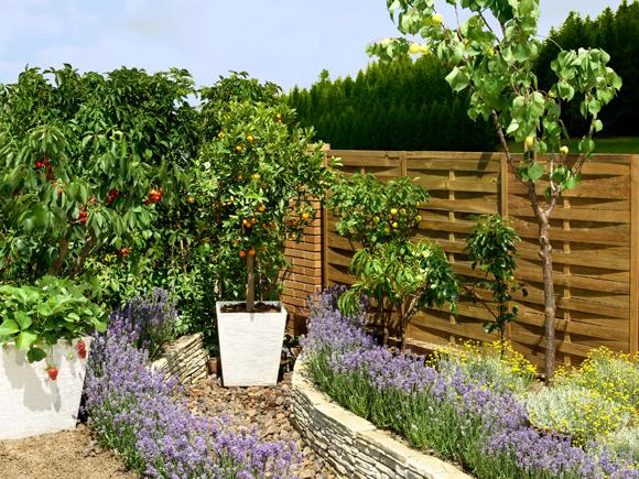 Como patear un patio y hacerlo producir