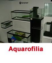 Aquarofilia