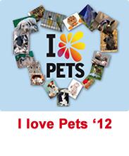 Concurso I Love Pets