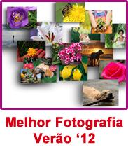 Concurso Melhor Fotografia Verão