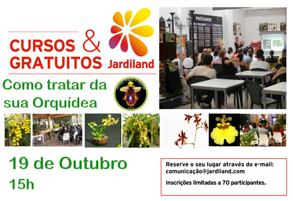 Orquideas19OUT