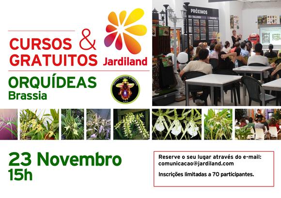 Orquideas 23NOV
