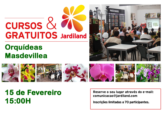 curso ORQUIDEAS_15FEV