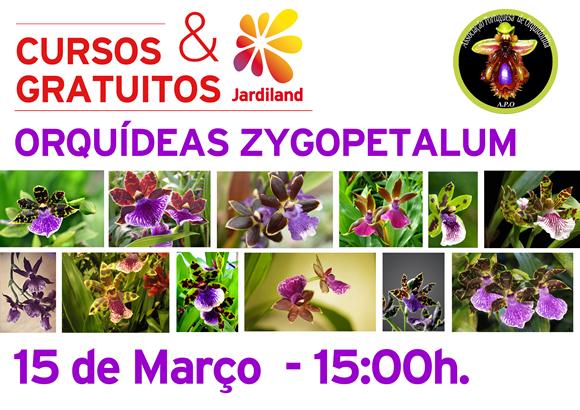 curso orquídeas_ MAIA3