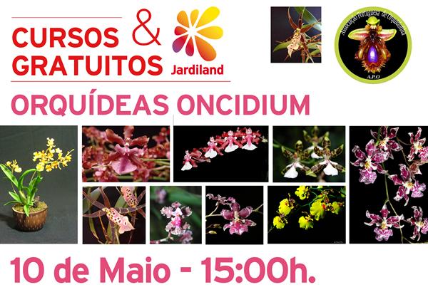 curso orqONCIDIUM_ MAIA