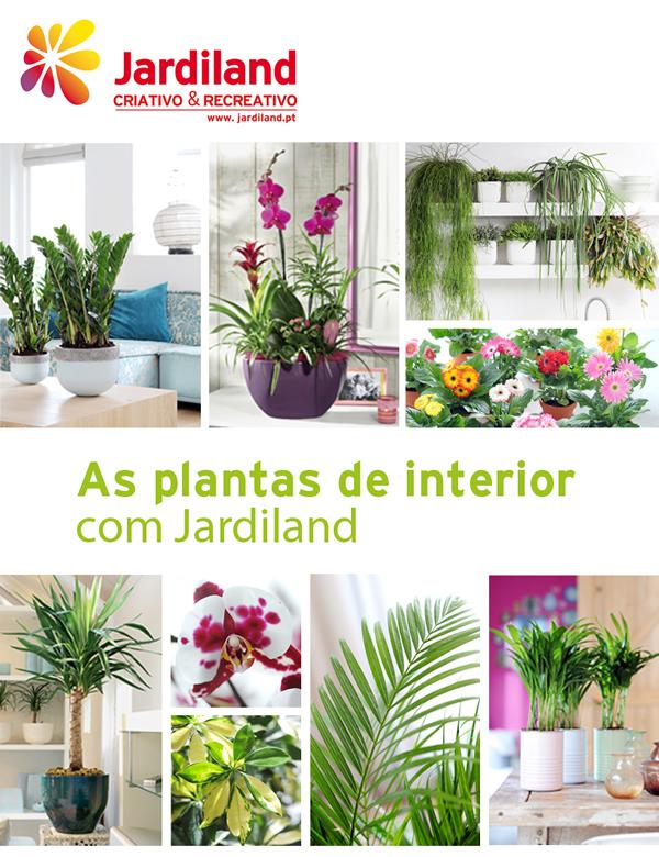 PlantasInterior_1