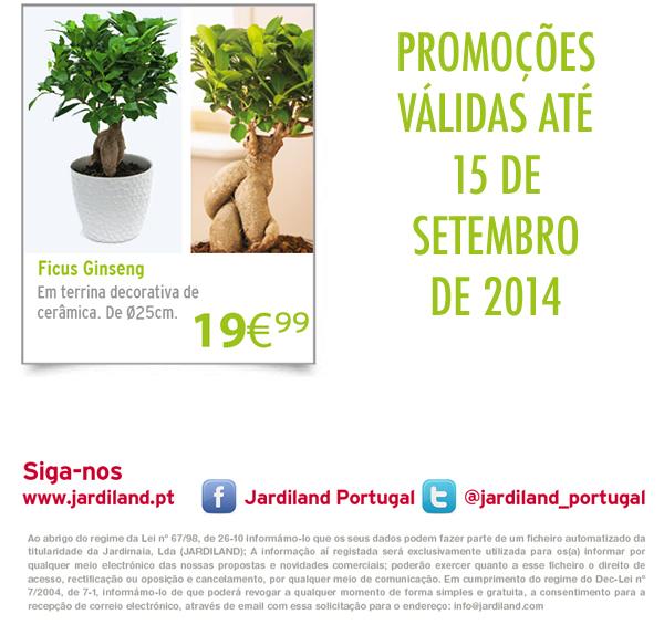 PlantasInterior_3