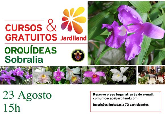 orquideasobralia