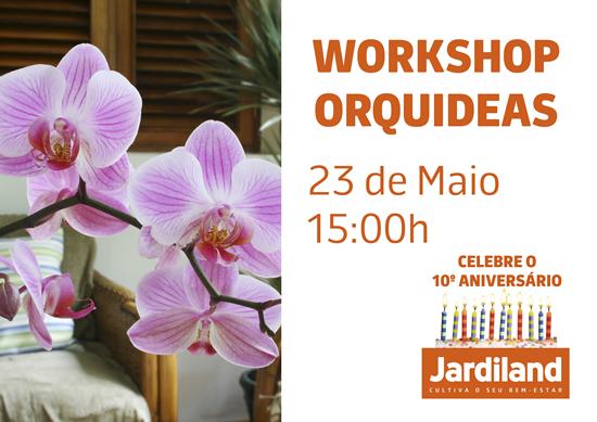 CARTAZ ANIVERSARIO_orquideas2