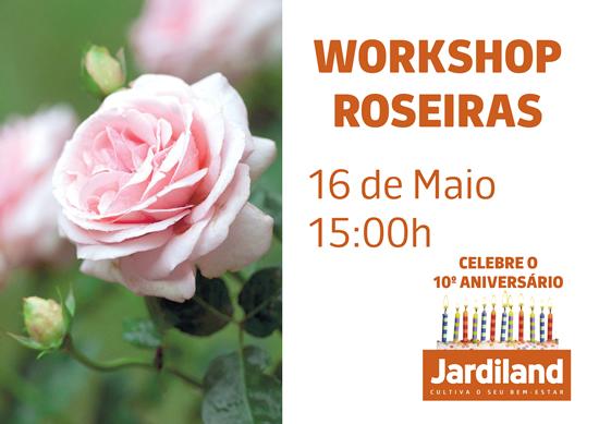 CARTAZ ANIVERSARIO_roseiras2