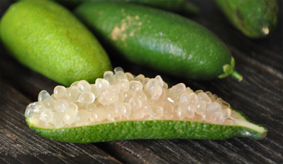 citrus_caviar