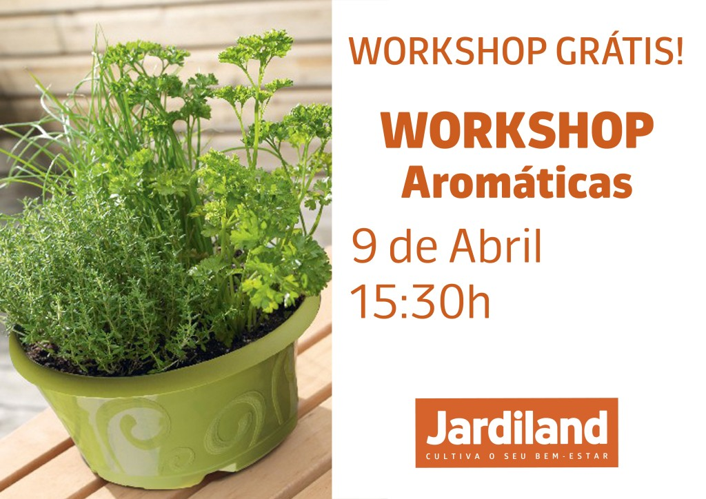 Workshop aromaticas